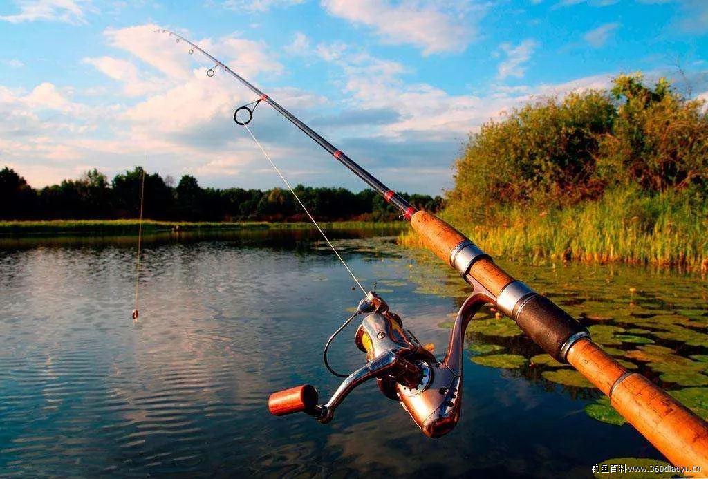 钓鱼技巧丨台钓抛竿这样做,一抛一个准儿!